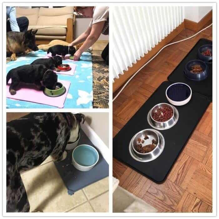 Dog Food Mat Waterproof Bowl Mat